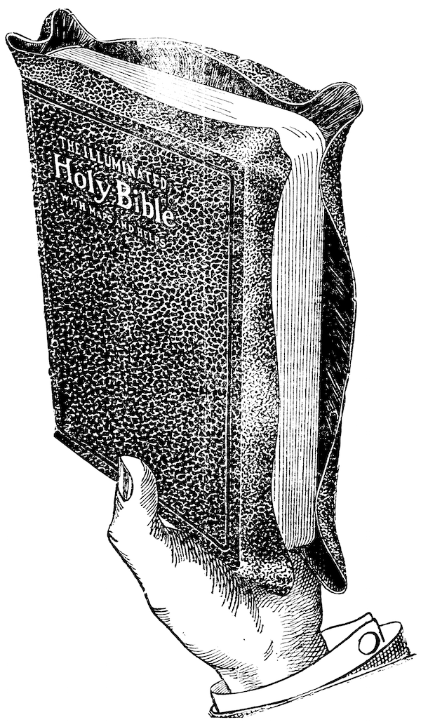 An advertisement for The Illuminated Holy Bible, which several newspapers sold directly. From the Brattleboro Daily Reformer (Brattleboro, Vt.), 15 Nov. 1916.